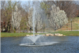 Fountain Spouting from the Lake 3