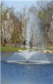 Fountain Spouting from the Lake